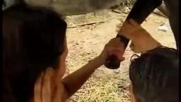 Sex horse сожитель с дамой сосут мерину зоо оральный sex